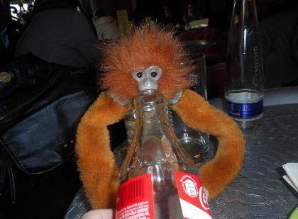 Minkey drinking a coke